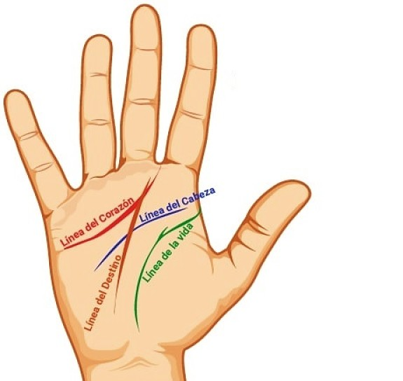 Como leer la mano lineas