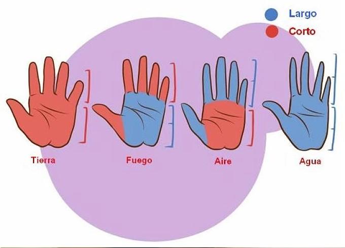 Como leer la mano forma de las manos